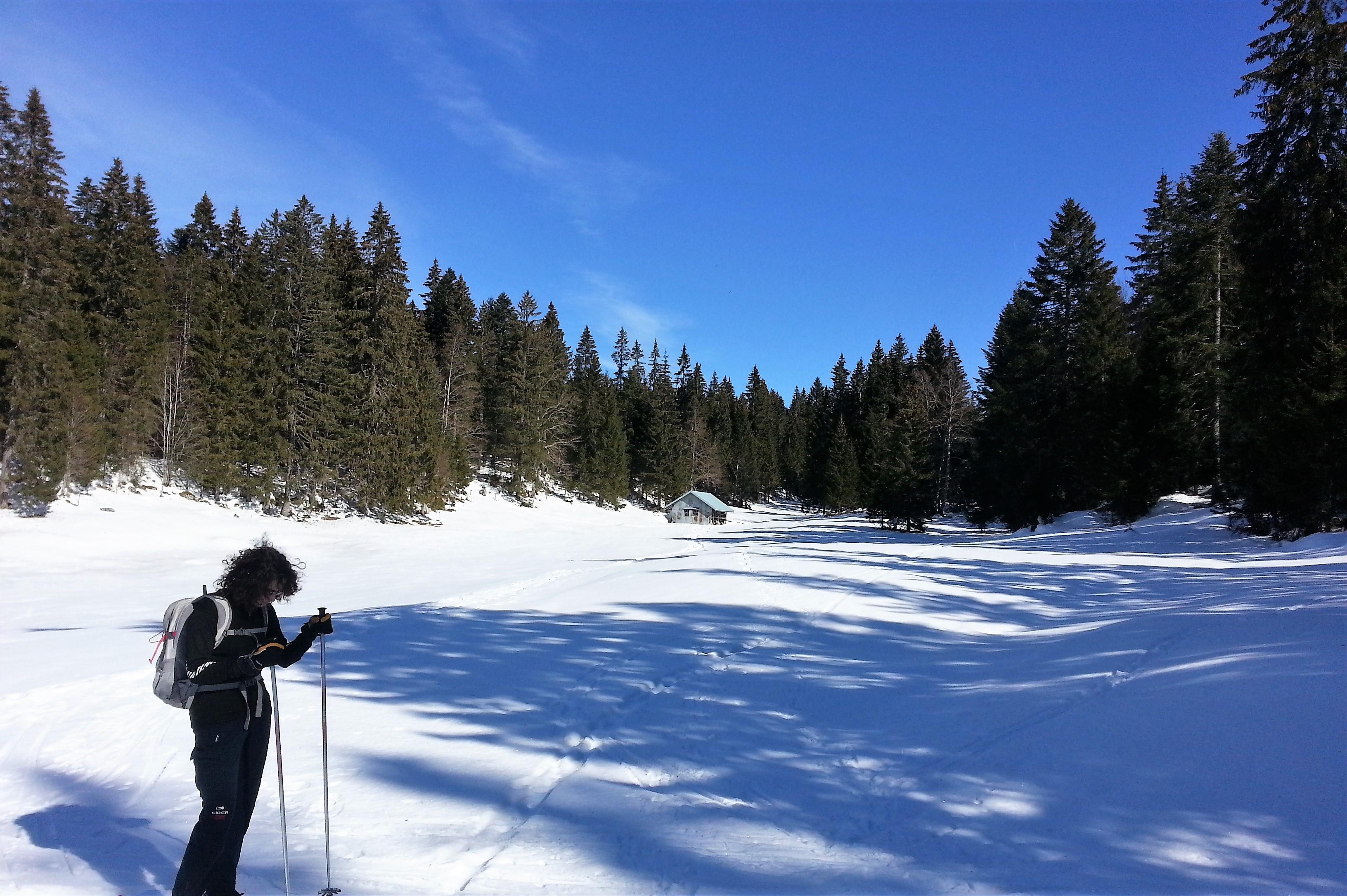 20150220 121955 2 Raquette à neige